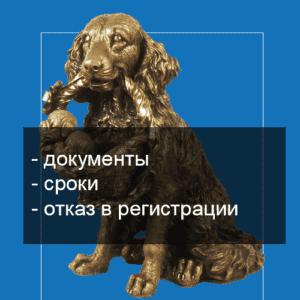 Регистрация ИП через МФЦ фото