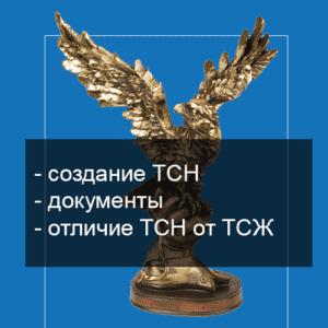 Регистрация ТСН